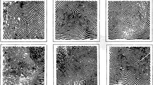 Where Did My Fingerprints Go?