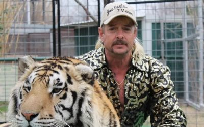"TV Review: ""Tiger King"""