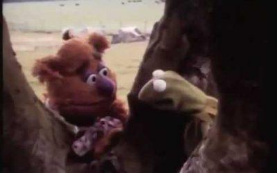 POTD: The Muppets Venture Outside